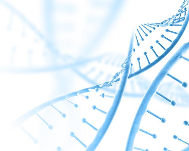Dieta personalizzata basata sul DNA: il legame tra nutrigenetica e sport